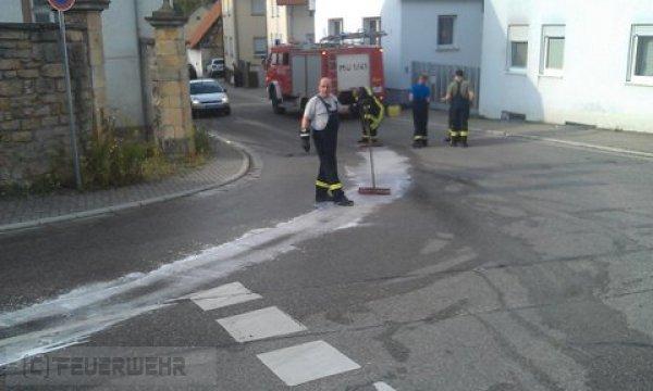 Hilfeleistung vom 28.07.2011  |  (C) Feuerwehr Muehlhausen (2011)
