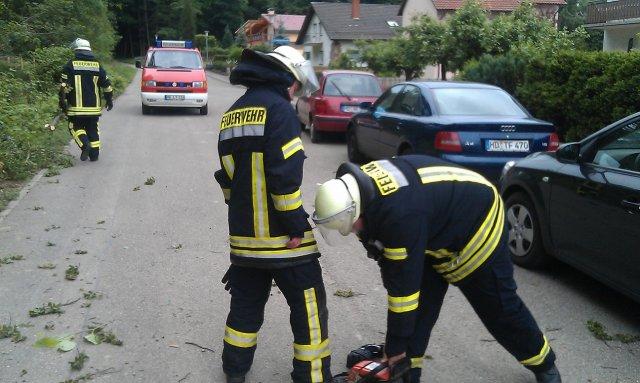 Hilfeleistung vom 27.05.2012  |  (C) Feuerwehr Muehlhausen (2012)